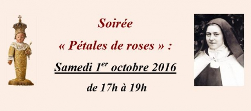 Petales roses.jpg